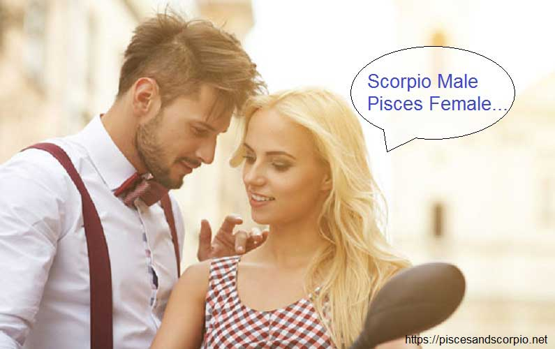 Love Scorpio and Pisces Relationship